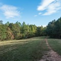 Open fields near the end of the trail.- Sweetwater Creek State Park