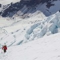 Climbing the Upper Emmons Glacier.- Mount Rainier: Emmons-Winthrop Glacier Route