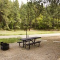 Picnic table and fire ring in the day use area adjacent Junction Creek Campground.- Junction Creek Campground
