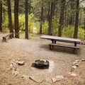 A typical campsite at Junction Creek Campground.- Junction Creek Campground