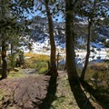 Approaching Lamoille Lake through the forest.- Lamoille Lake