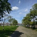 The park is a mixture of lawn, plantings and wide pathways.- East River State Park