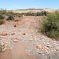 Portions of the trail are over stony wash basins.- First Creek Pool + Waterfall
