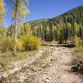 The eastern trail along Cascade Creek.- Cascade Creek Trail