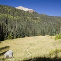 Quiet, expansive meadows at Cascade Creek attract wildlife—and hunters.- Cascade Creek Trail