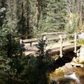 The bridge over Engine Creek, near an unnamed waterfall, along the Cascade Creek Trail.- Cascade Creek Trail