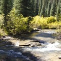 A creek crossing during low flow along the Cascade Creek Trail.- Cascade Creek Trail