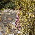 Creek crossings along the Cascade Creek Trail are marked with striped ribbon.- Cascade Creek Trail