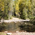 A creek crossing near the trailhead of Cascade Creek Trail.- Cascade Creek Trail