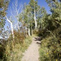 The Jud Wiebe Trail.- Jud Wiebe Trail