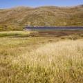 Grassy meadow near the third Highland Mary lake.- Highland Mary Lakes
