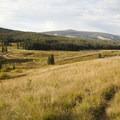 Looking toward the Lizard Head Trailhead near Wilson Meadows.- Wilson Meadows