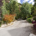North Aspen Street near the Jud Wiebe Trailhead.- Sneffels Highline