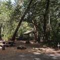 Typical site in Patrick's Creek Campground.- Patrick's Creek Campground