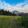 Wide rolling trails.- Beaver Pond Loop