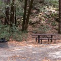 Various picnic sites line the roadside.- Panther Flat Pools