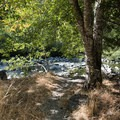 Access from the campground.- Madrona Campground