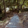 Stairway down to the river access trail.- Sandy Beach