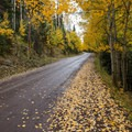 Fall road between Owl Creek Pass and Silver Jack Reservoir.- Owls Creek Pass + Silver Jack Reservoir