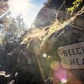 Beechey Head.- Coast Trail: Aylard Farm to Beechey Head
