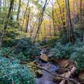 Fall colors over Little Santeetlah Creek.- Joyce Kilmer-Slickrock Wilderness Loop