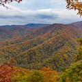 Opening in the trees to reveal fall colors in the Southern Blue Ridge Mountains.- Joyce Kilmer-Slickrock Wilderness Loop