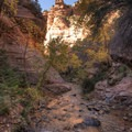 Every few hundred feet there is a new pocket canyon.- Kanarra Creek Trail to Kanarraville Falls