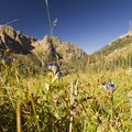 Great views from the heart of the Chicago Basin.- Chicago Basin