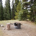 A typical campsite at Little Molas Campground.- Little Molas Campground