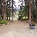Several of the campsites at Little Molas Campground are well shaded and spacious.- Little Molas Campground