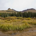 Looking at Little Molas Campground from Little Molas Lake.- Little Molas Campground