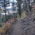 Most of the elevation gain occurs in the first part of the trail.- Stewart Falls Trail