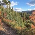 Open views along the Stewart Falls Trail.- Stewart Falls Trail