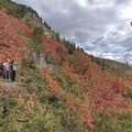 Taking in the fall colors along the Stewart Falls Trail.- Stewart Falls Trail