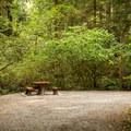 A campsite at Goldstream Provincial Park Campground.- Goldstream Campground