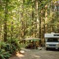 Goldstream Provincial Park Campground.- Goldstream Campground