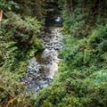 Goldstream.- Goldstream Campground
