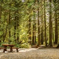Typical campsite in the main loop.- Goldstream Campground
