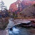 Stream in the canyon bed.- Kolob Arch