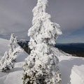 Heavy winds shape the ice formations on Middle Peak.- Middle Peak Snowshoe