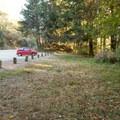 Parking area alongside Highway 101.- Natural Bridges Viewpoint