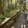 The boardwalk heading back to the parking area.- Natural Bridges Viewpoint