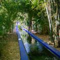 Walled creek leading to Majorelle Blue square fountain.- Jardin Majorelle