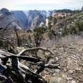 Looking back toward Heaps Canyon.- West Rim Trail, Lava Point to Zion Canyon