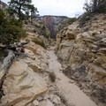 Hiking toward the edge of the main canyon.- West Rim Trail, Lava Point to Zion Canyon