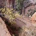 Looking down at the iconic Walter's Wiggles.- West Rim Trail, Lava Point to Zion Canyon
