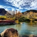 It is easy to pull over and enjoy scenery along the river.- Lower Salt River: Water Users Camp Circle to Granite Reef