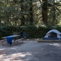 Sites come with a parking spot, room for a tent, a picnic table and a fire pit. They are typically protected by a line of bushes or trees around each site for privacy and wind protection.- Harris Beach State Park Campground