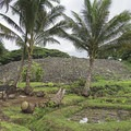 Looking southwest from the northeast corner of the Heiau.- The Ulupo Heiau State Historical Site