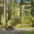 Typical Campsite at French Beach Provincial Park Campground.- French Beach Campground